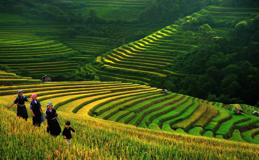 Vietnam_autumn_1.jpg