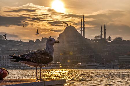 istambul-turkey-min.jpg
